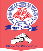 Kaishogun Tiger Karate Institute Of India